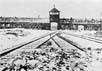 Освенцим. Фото с сайта discovery-experimental.com