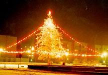 Новогодняя елка. Фото с сайта mozyr.tut.by