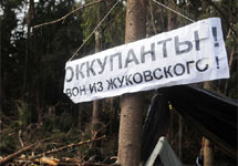 В Цаговском лесу. Фото В.Максимюк/Грани.Ру