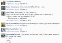 Комментарии к посту в Фейсбуке