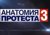 """Анатомия протеста-3"". Кадр НТВ"
