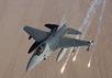 Истребитель F-16 ВВС Бельгии. Фото: f-16.net
