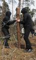 Защитники Цаговского леса демонтируют ограждение. Фото Вероники Максимюк/Грани.Ру