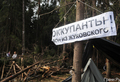 В Цаговском лесу. Фото Вероники Максимюк/Грани.Ру