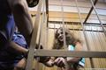 Мария Алехина в Таганском суде 20 июня. Фото Вероники Максимюк/Грани.Ру